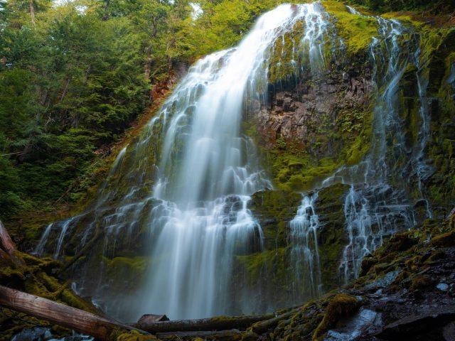 Покрытая зеленью гора с зелеными деревьями между водопадами в дневное время природа