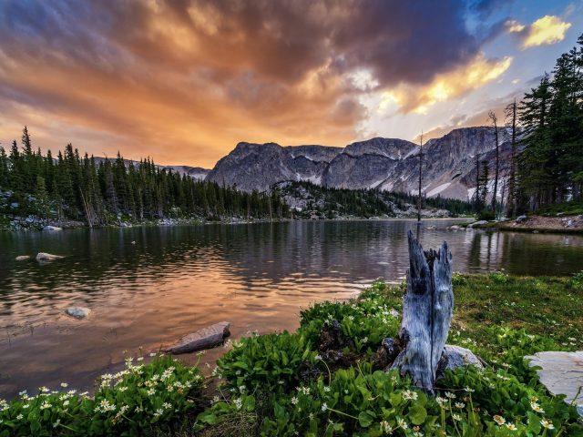 Зеленые деревья между озером под облаками с горами природа