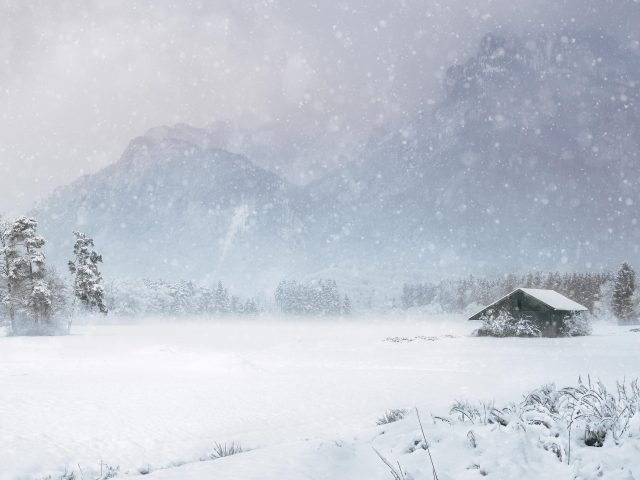 Заснеженная Хижина в соснах с горным фоном со снегопадом зимой