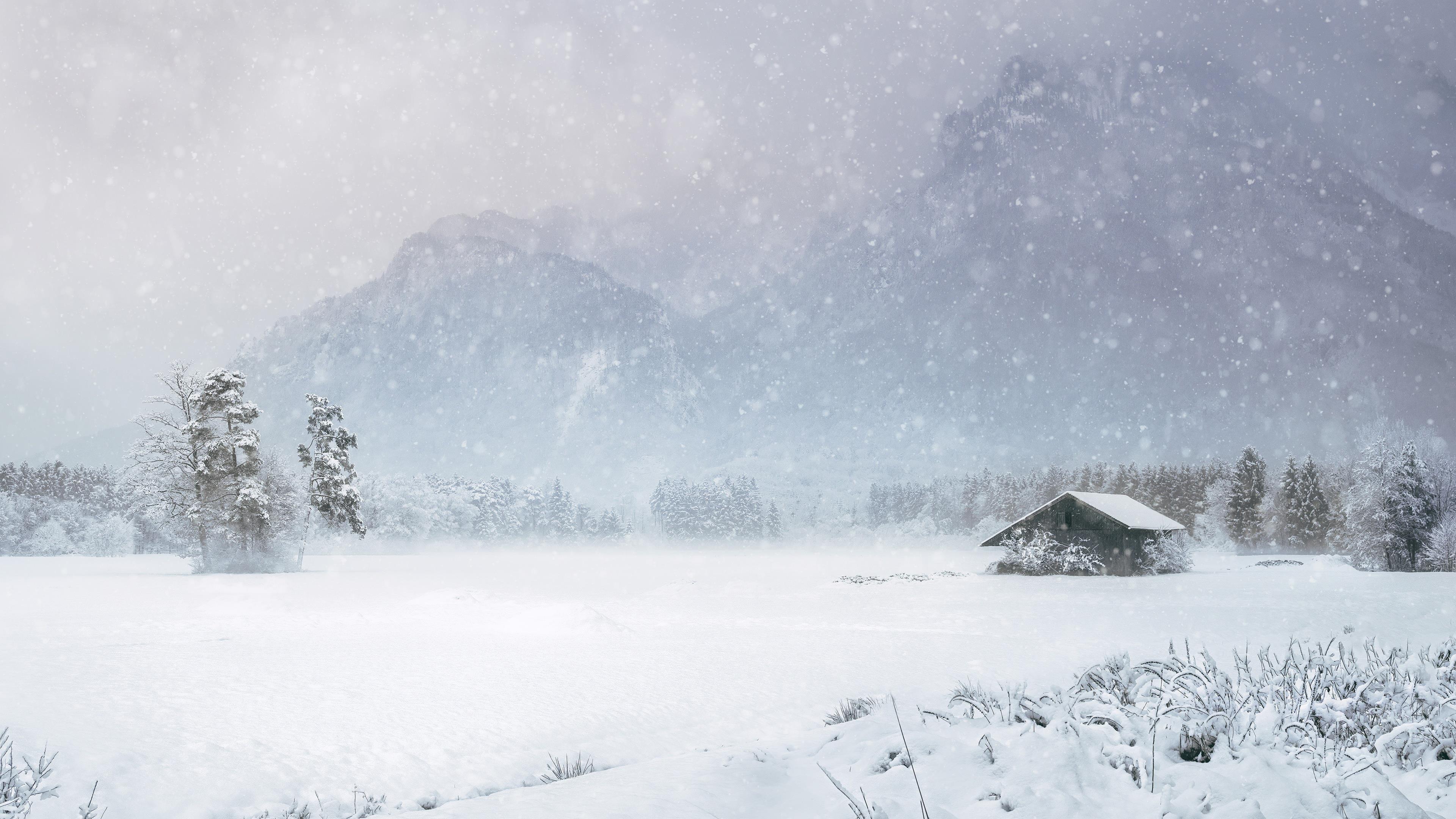 Заснеженная Хижина в соснах с горным фоном со снегопадом зимой обои скачать