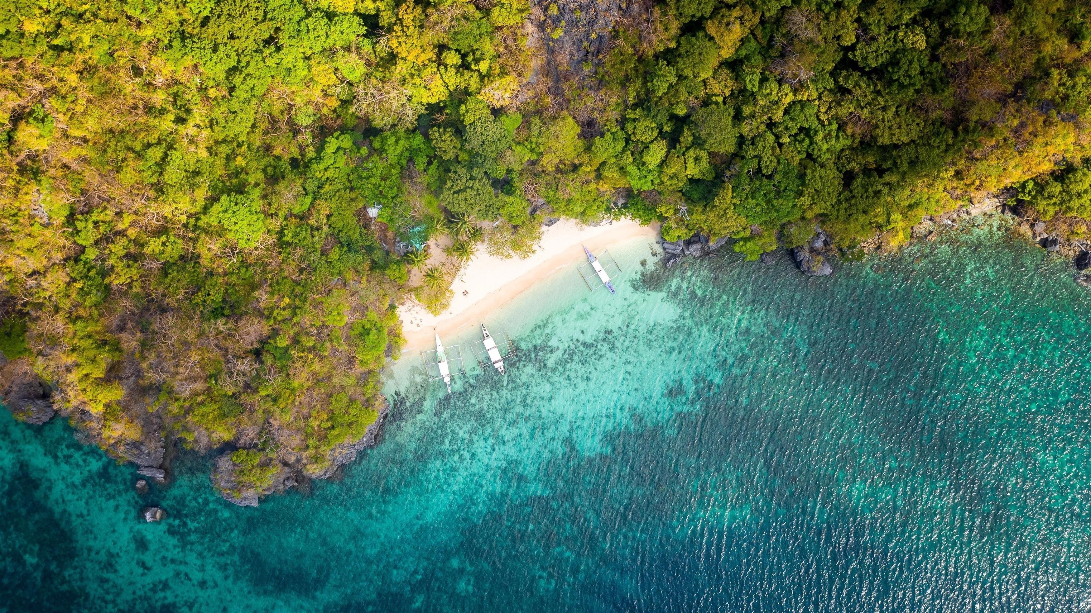 Тропический пляж с высоты птичьего полета обои скачать