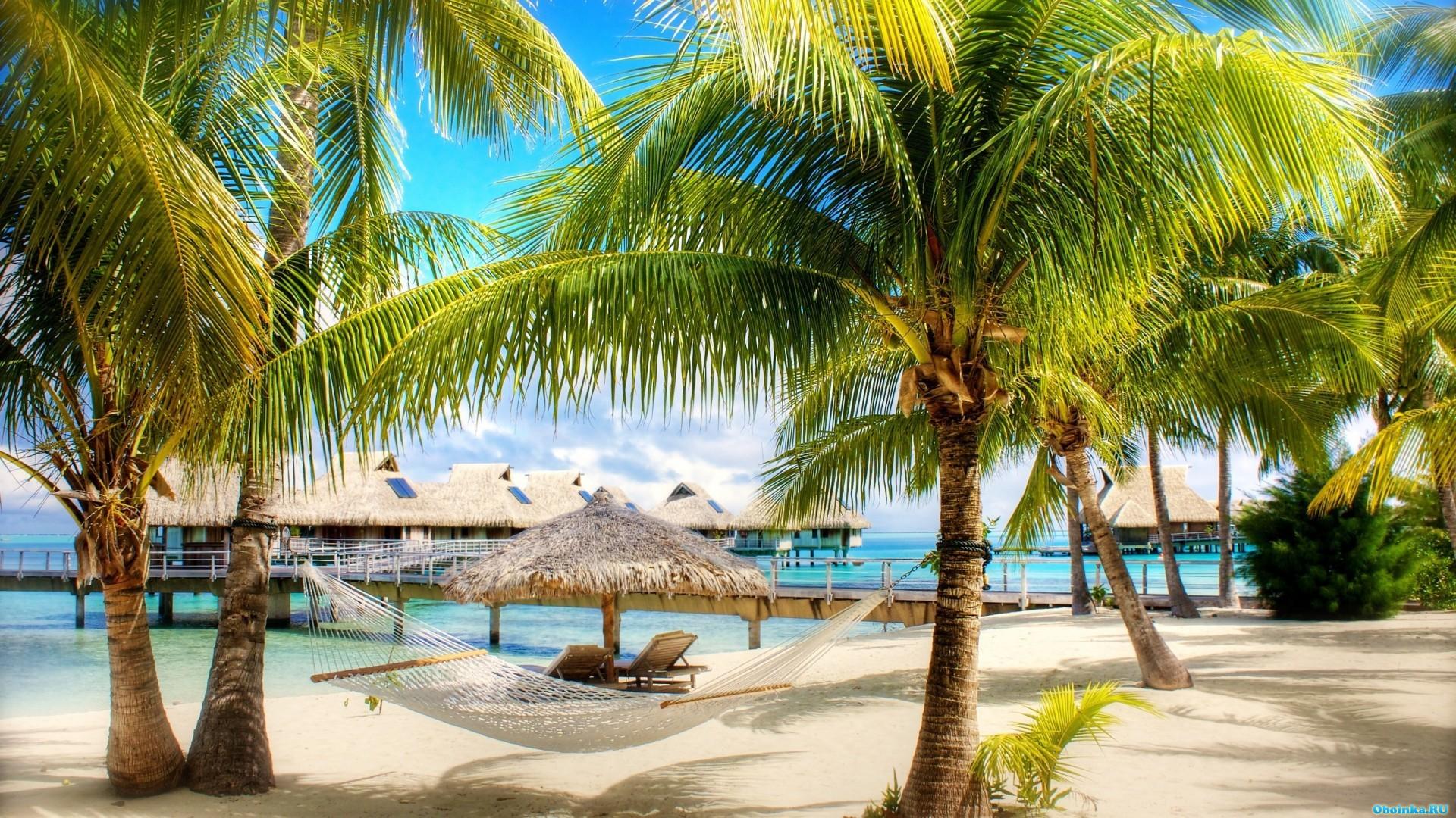 Тропический пляж с домиком обои скачать
