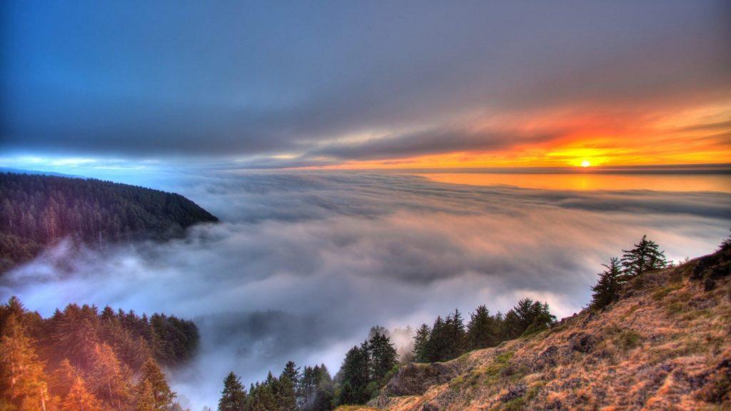 Туман покрыл деревья горы под белым желтым черным облачным небом природа обои скачать