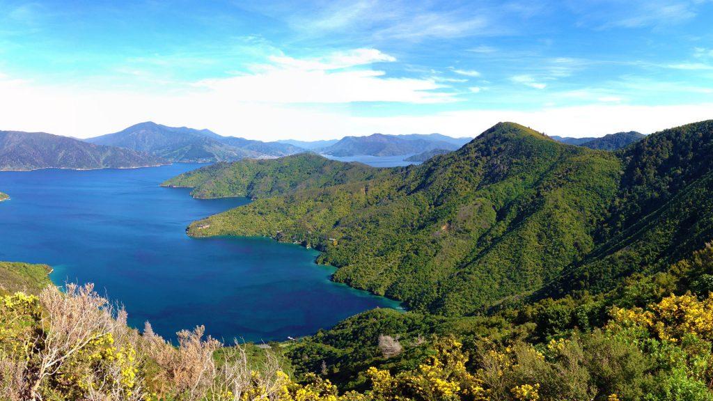 Королевы Шарлотты Мальборо саундс, Новая Зеландия. обои скачать