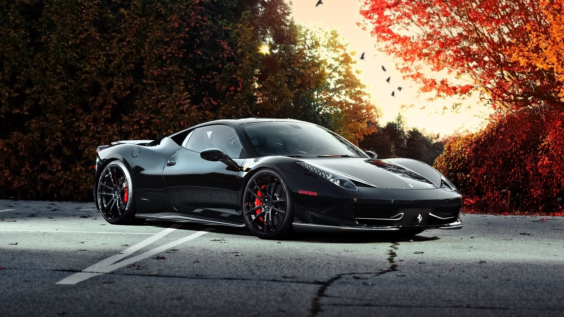 С черной Феррари 458 сзади обои скачать