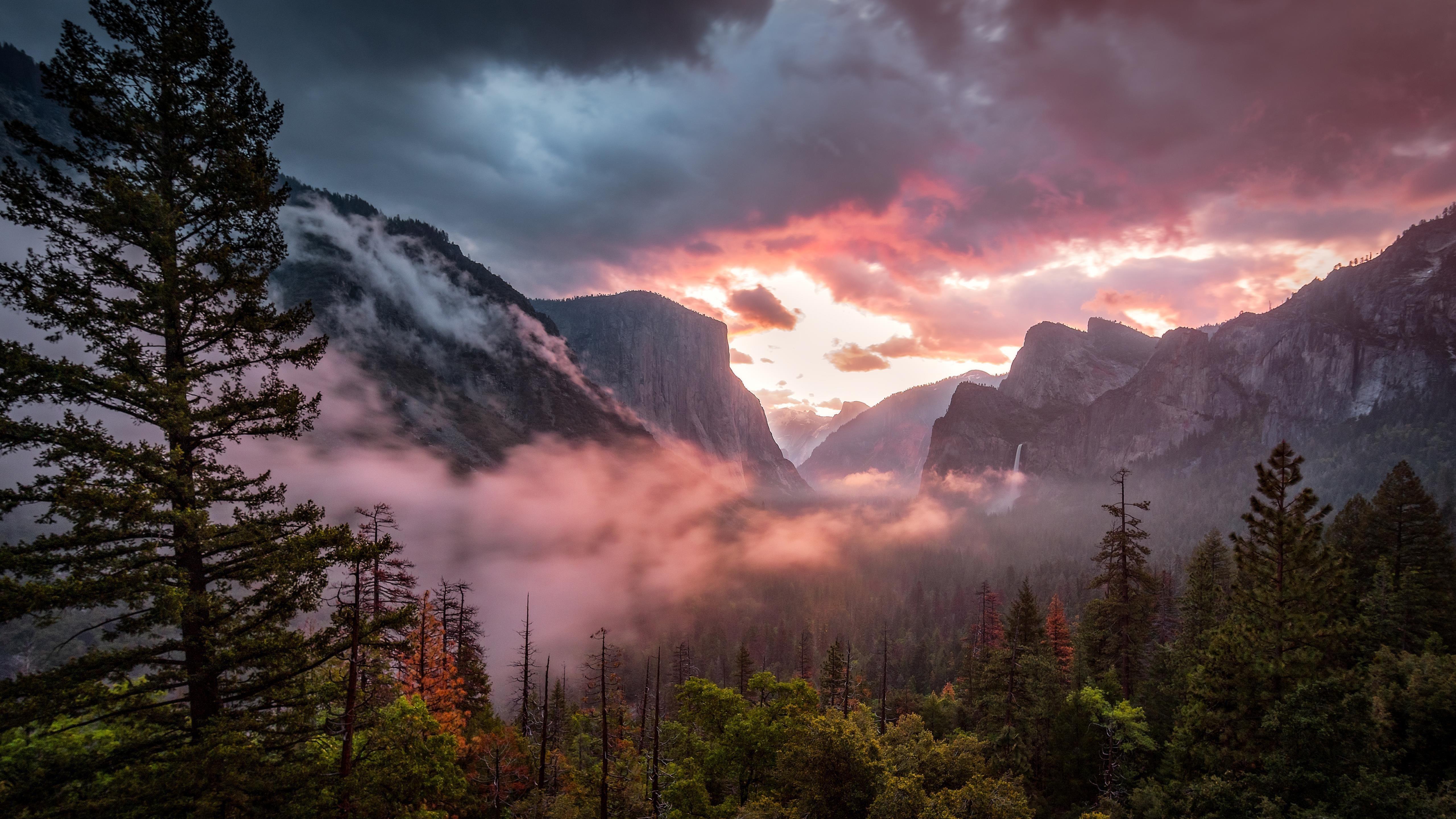 Утренний пейзаж долины Йосемити обои скачать