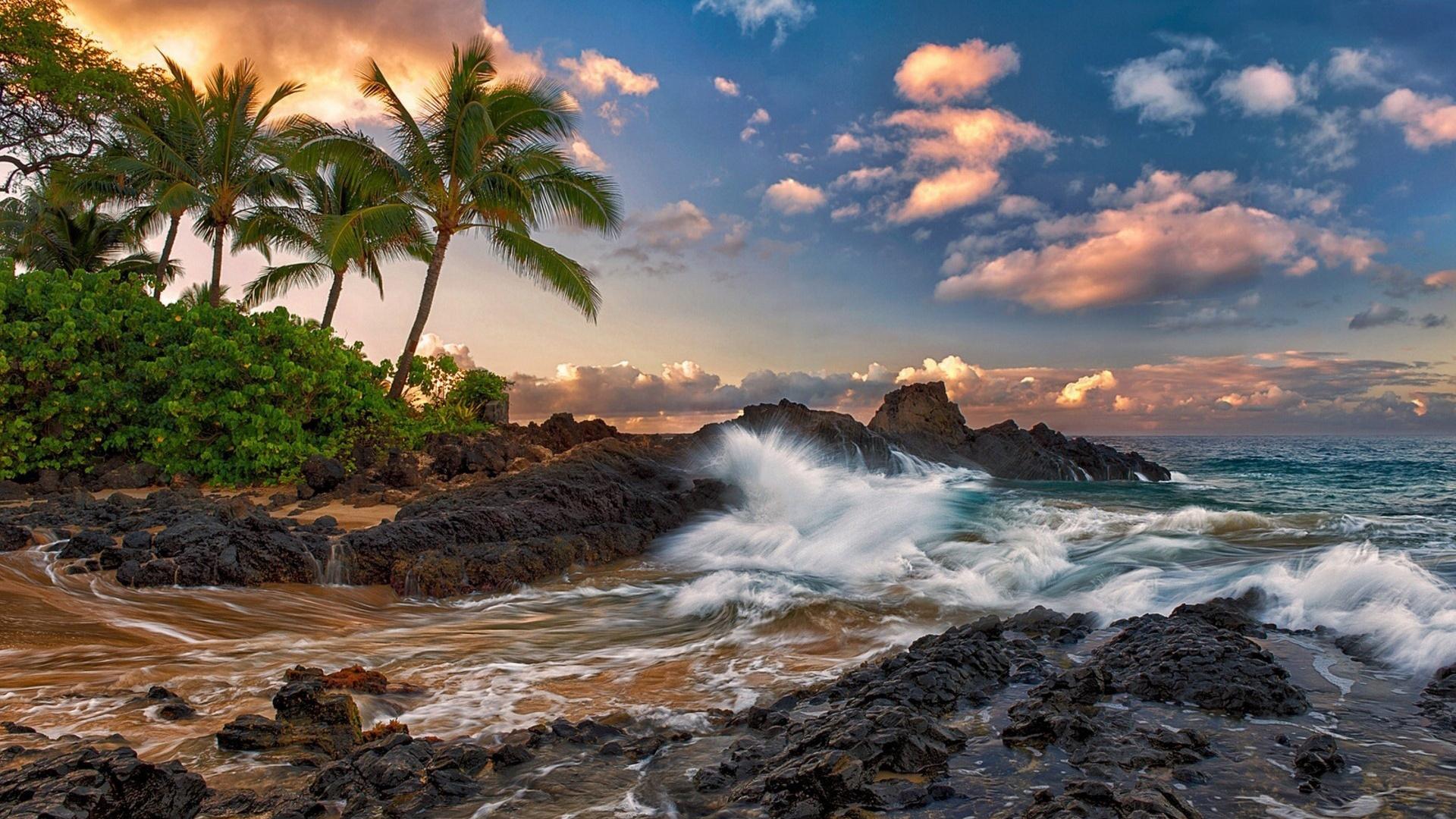 С пальмами на тропическом пляже с прибоем обои скачать