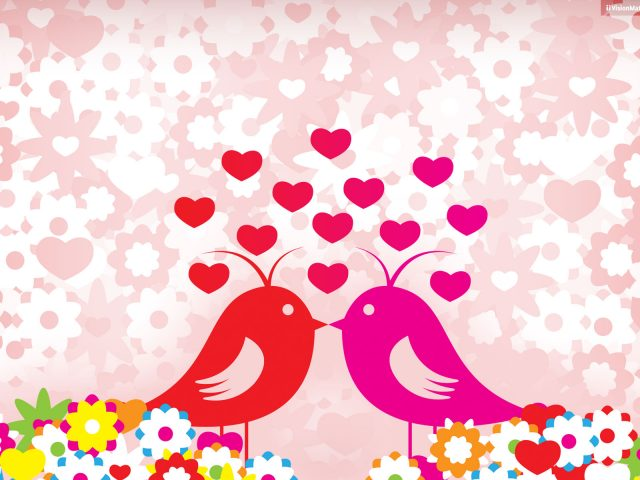 Любовь птицы.