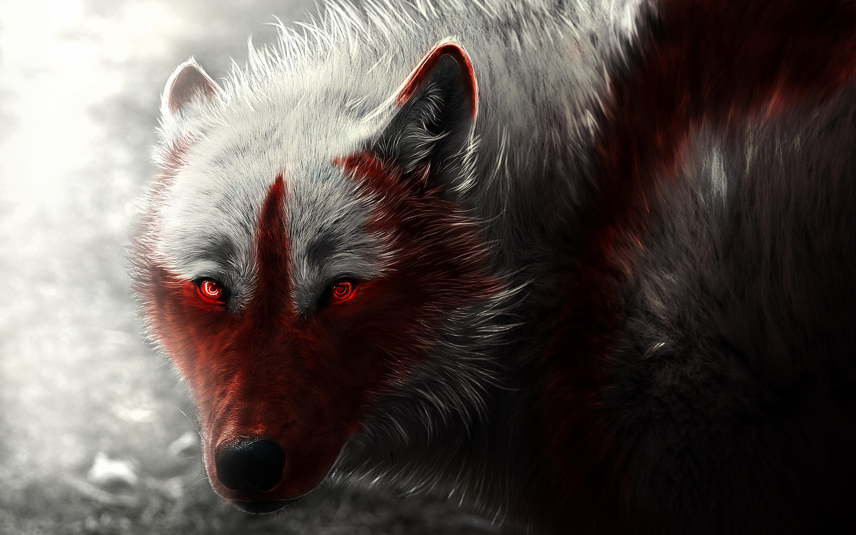 Художественное произведение арктического волка обои скачать