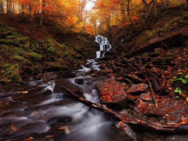 Осенний лес водопад
