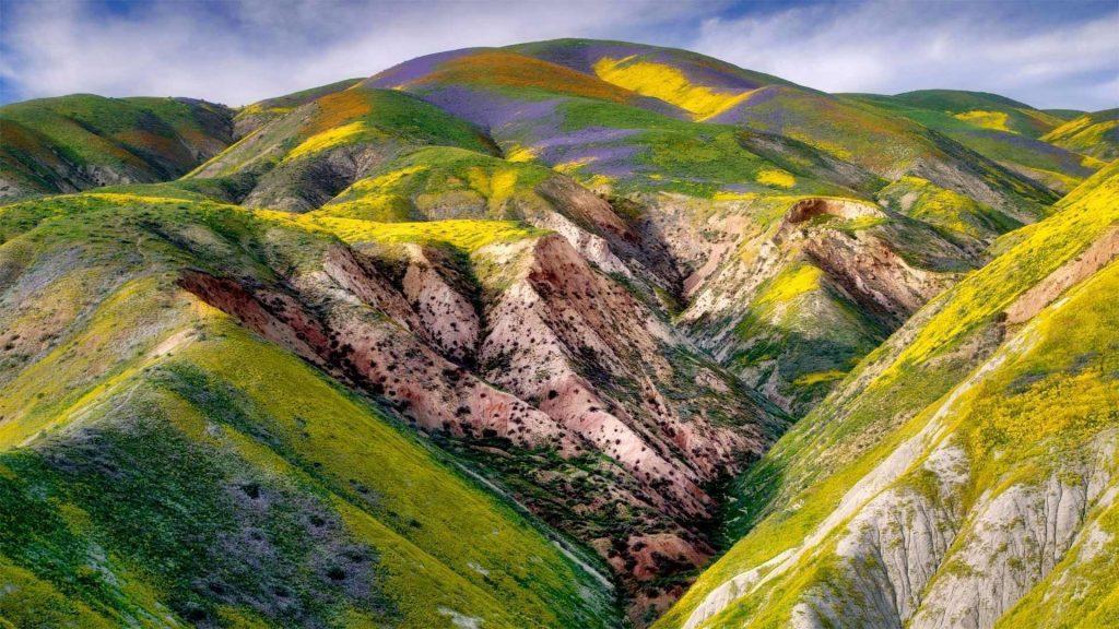 Зеленые фиолетовые покрытые горные склоны под голубым облачным небом природа обои скачать