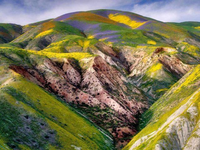 Зеленые фиолетовые покрытые горные склоны под голубым облачным небом природа