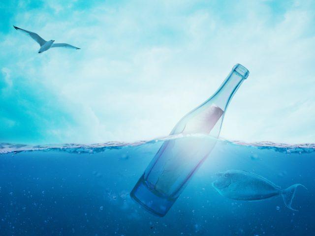 Бутылка секрет рыба птица