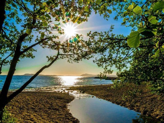 Отражение солнечного луча на водоеме природа