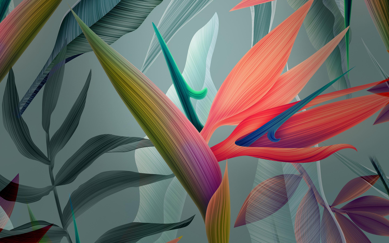 Абстрактные цветы обои скачать