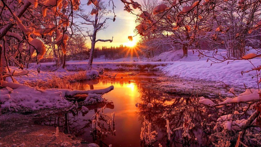 Река между замерзшей землей с деревьями с отражением солнечных лучей на воде природа обои скачать