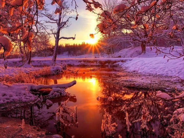 Река между замерзшей землей с деревьями с отражением солнечных лучей на воде природа