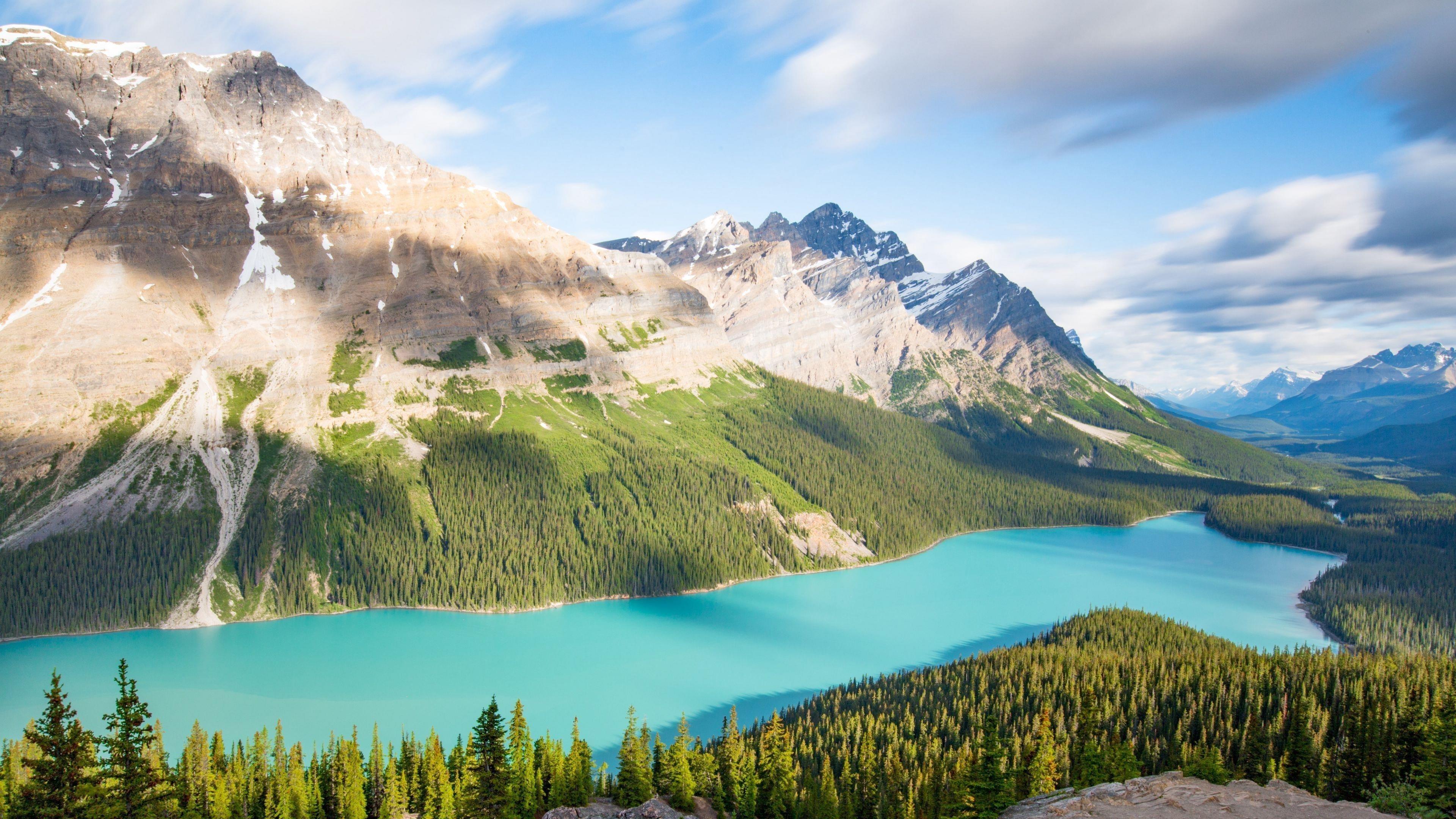 Озеро горы деревья ель пейзаж обои скачать
