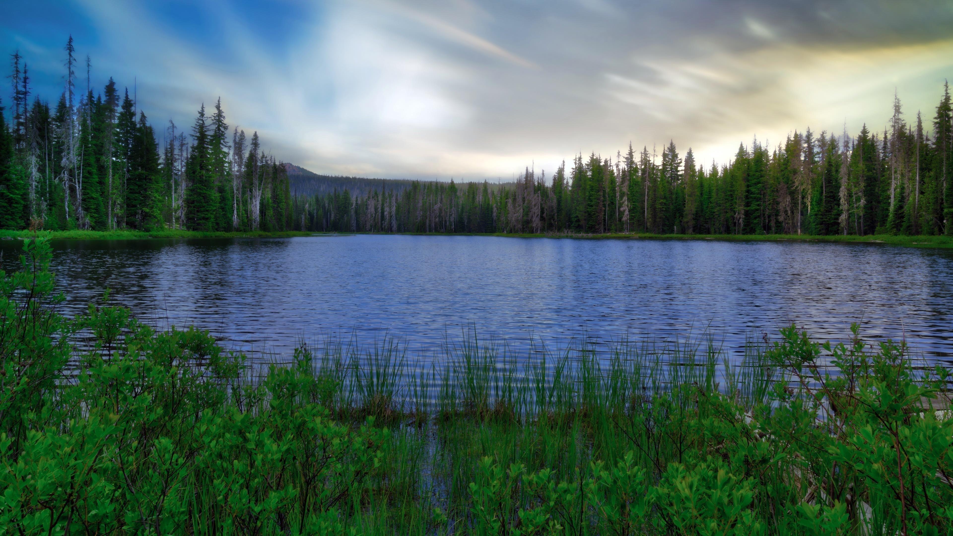 Озеро деревья небо облака обои скачать