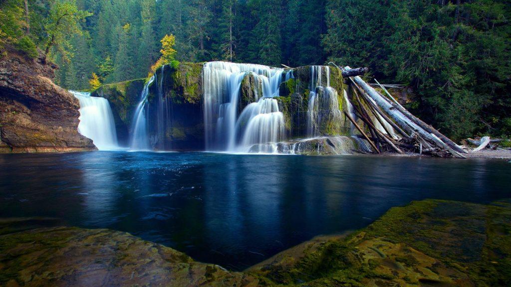 Ручей водопад на покрытых водорослями скалах льется по реке в окружении деревьев в джунглях природы обои скачать