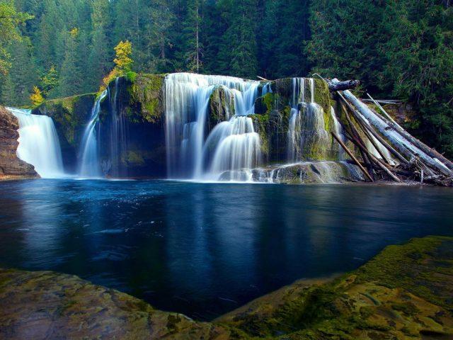 Ручей водопад на покрытых водорослями скалах льется по реке в окружении деревьев в джунглях природы