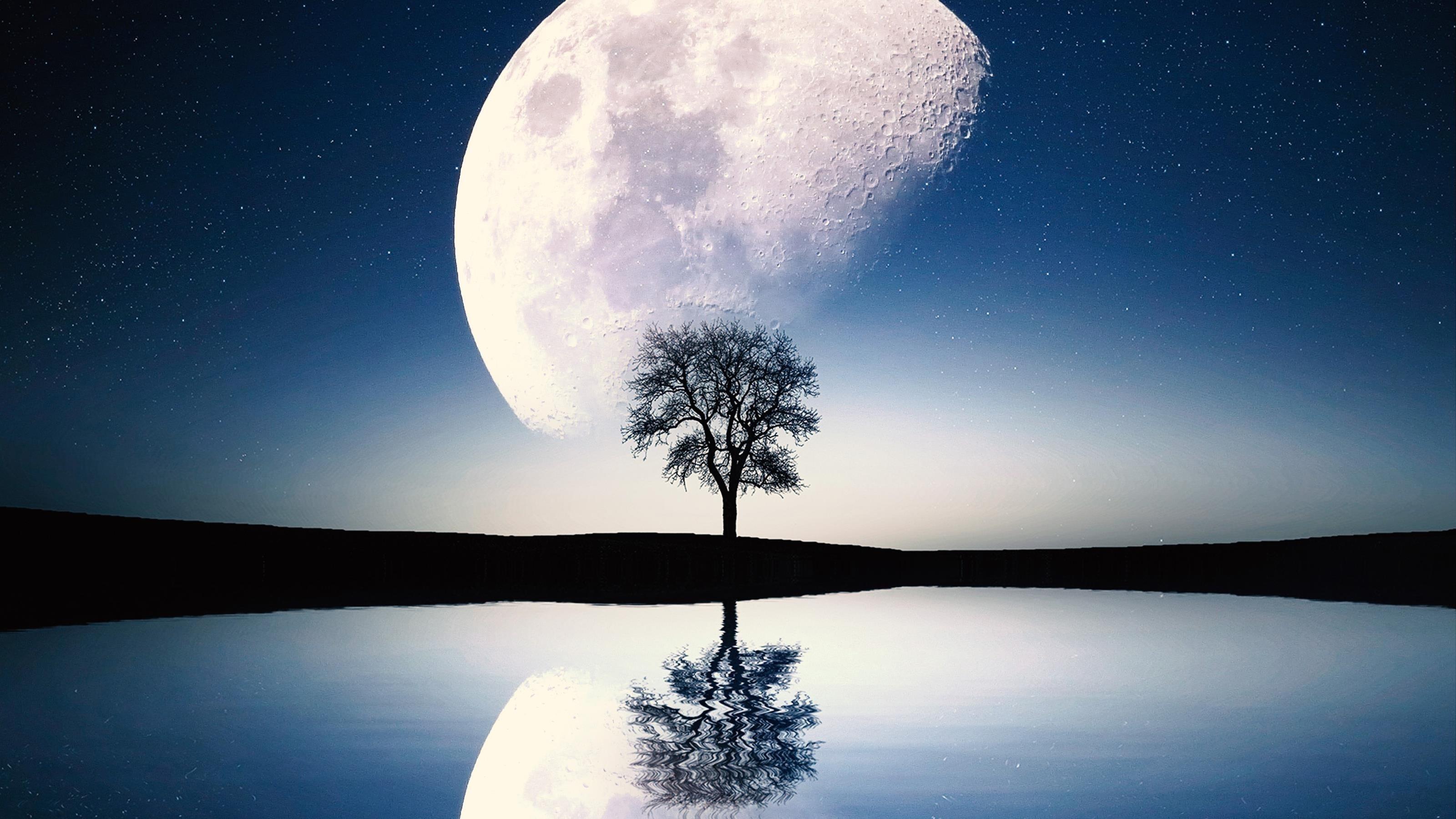 Сюрреалистическая сцена Луны обои скачать