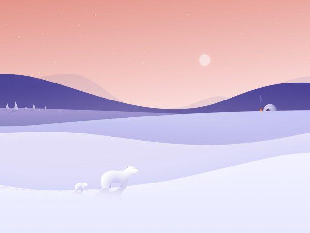 Зима на полюсе
