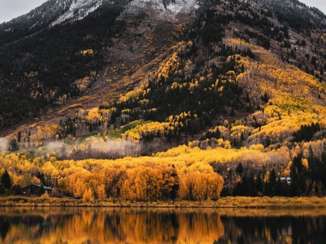 Пейзажный вид на зелено-желтые деревья, покрытые горами, отражение водной природы