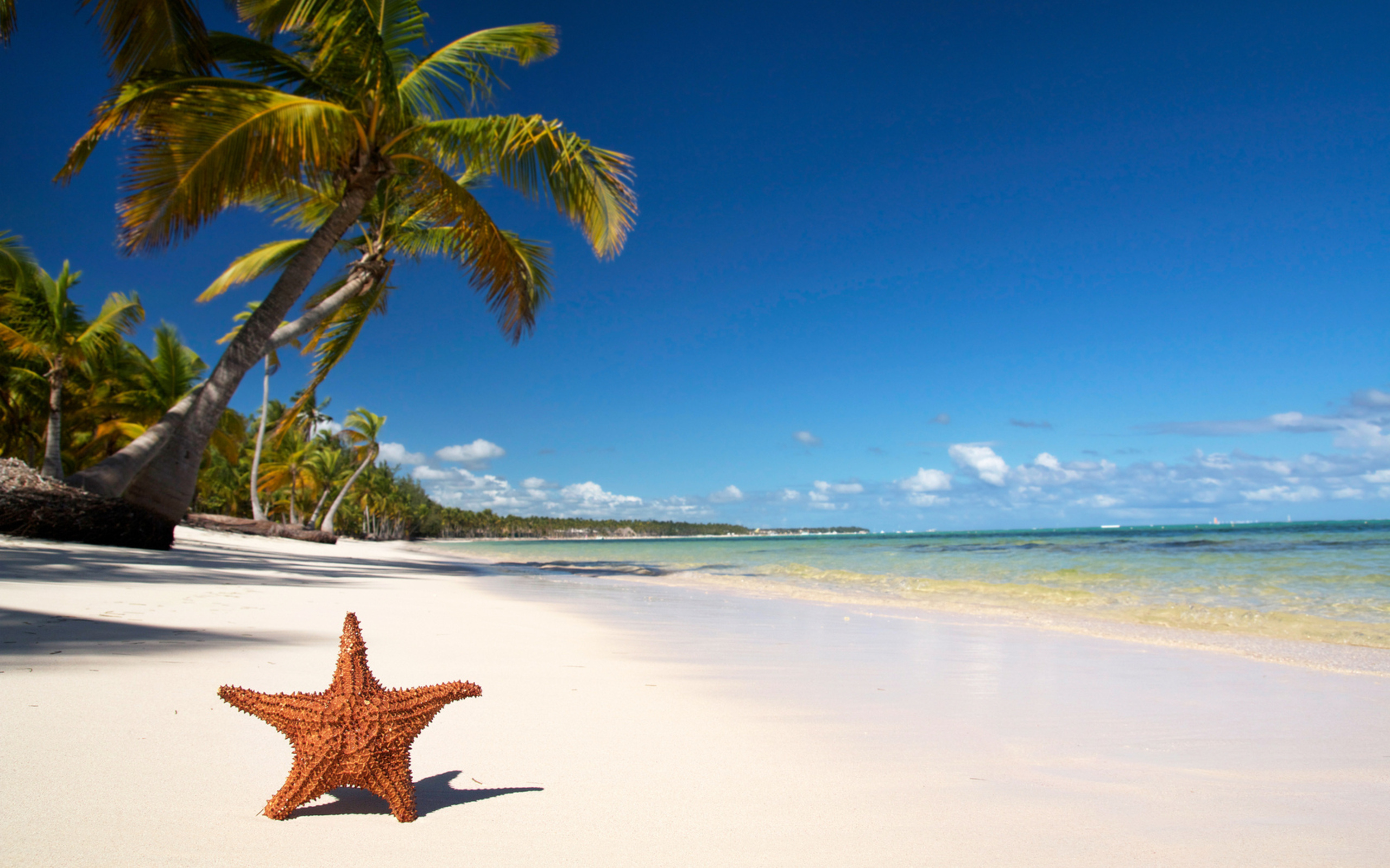 Природа, пляж, песок, вода обои скачать
