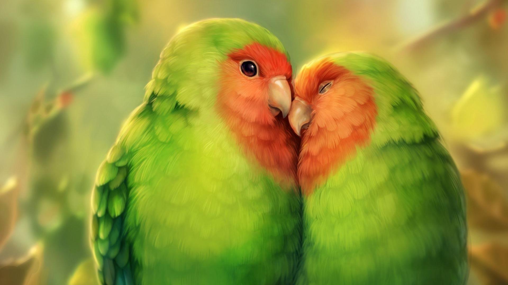 Попугаи птицы животные искусства обои скачать