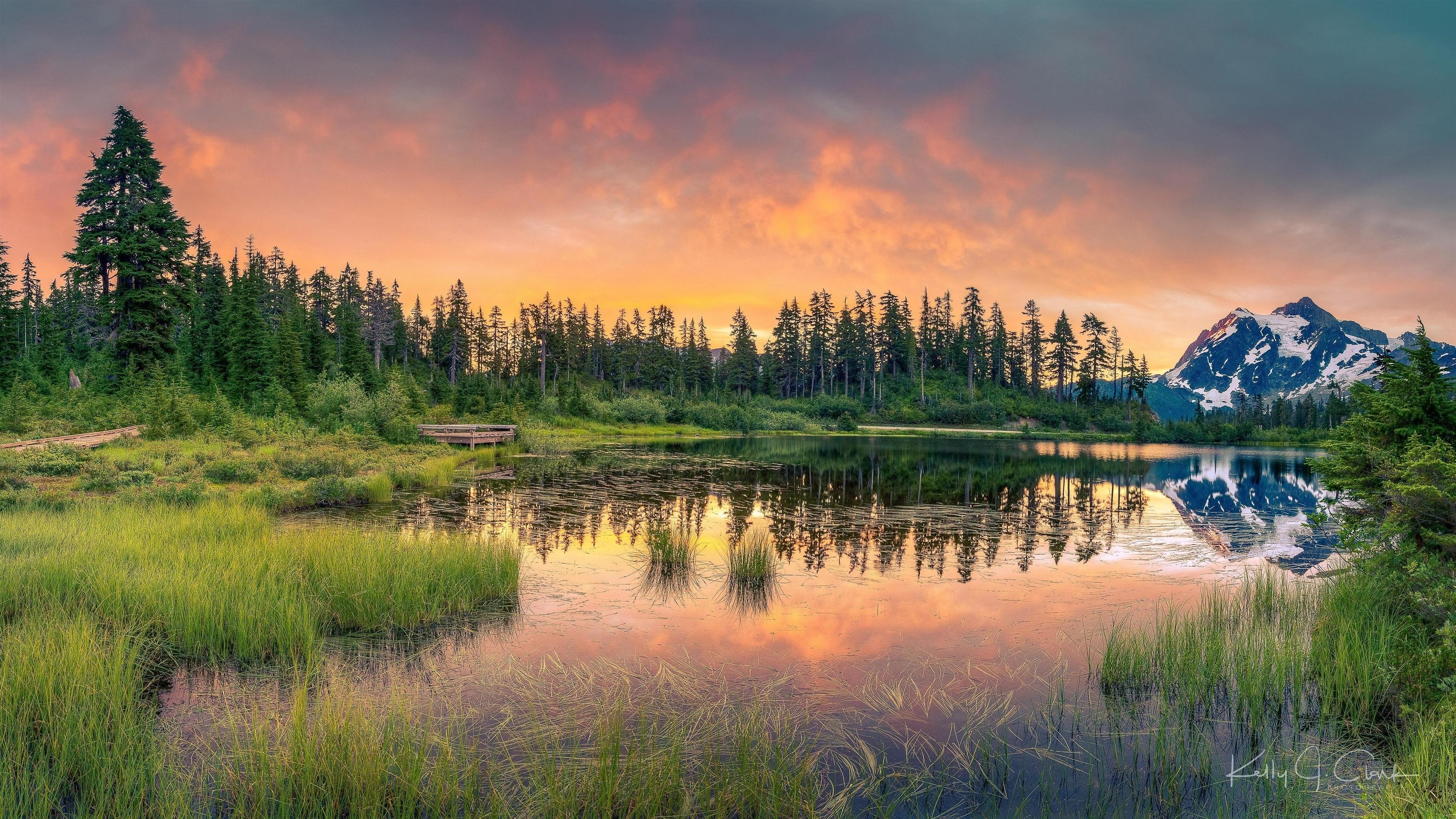 Земля озеро деревья обои скачать