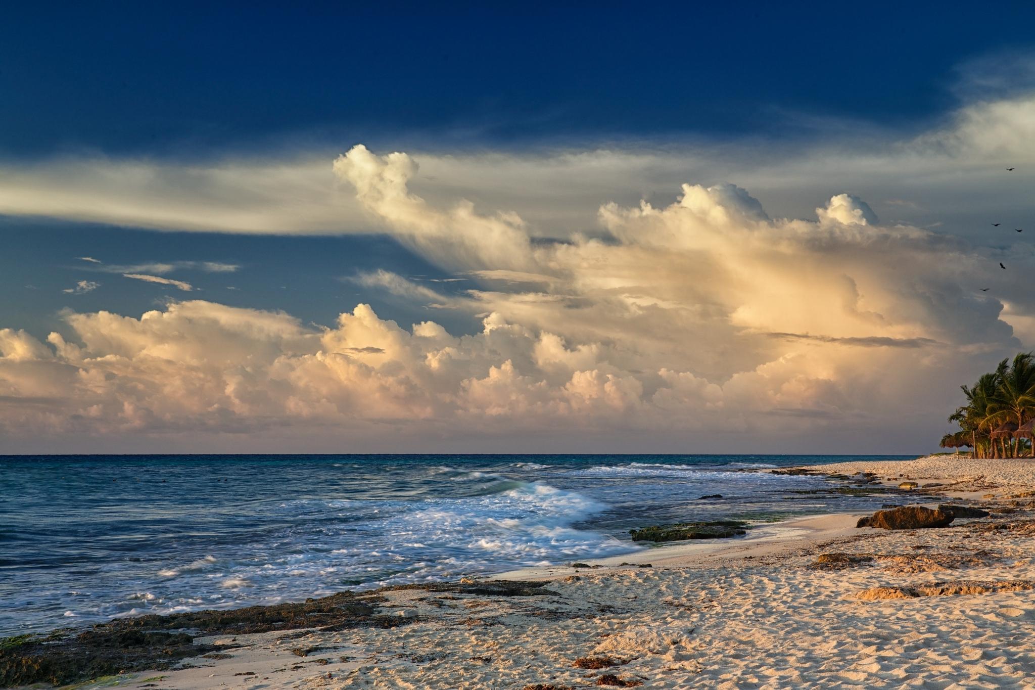 Море, пальмы, песок обои скачать