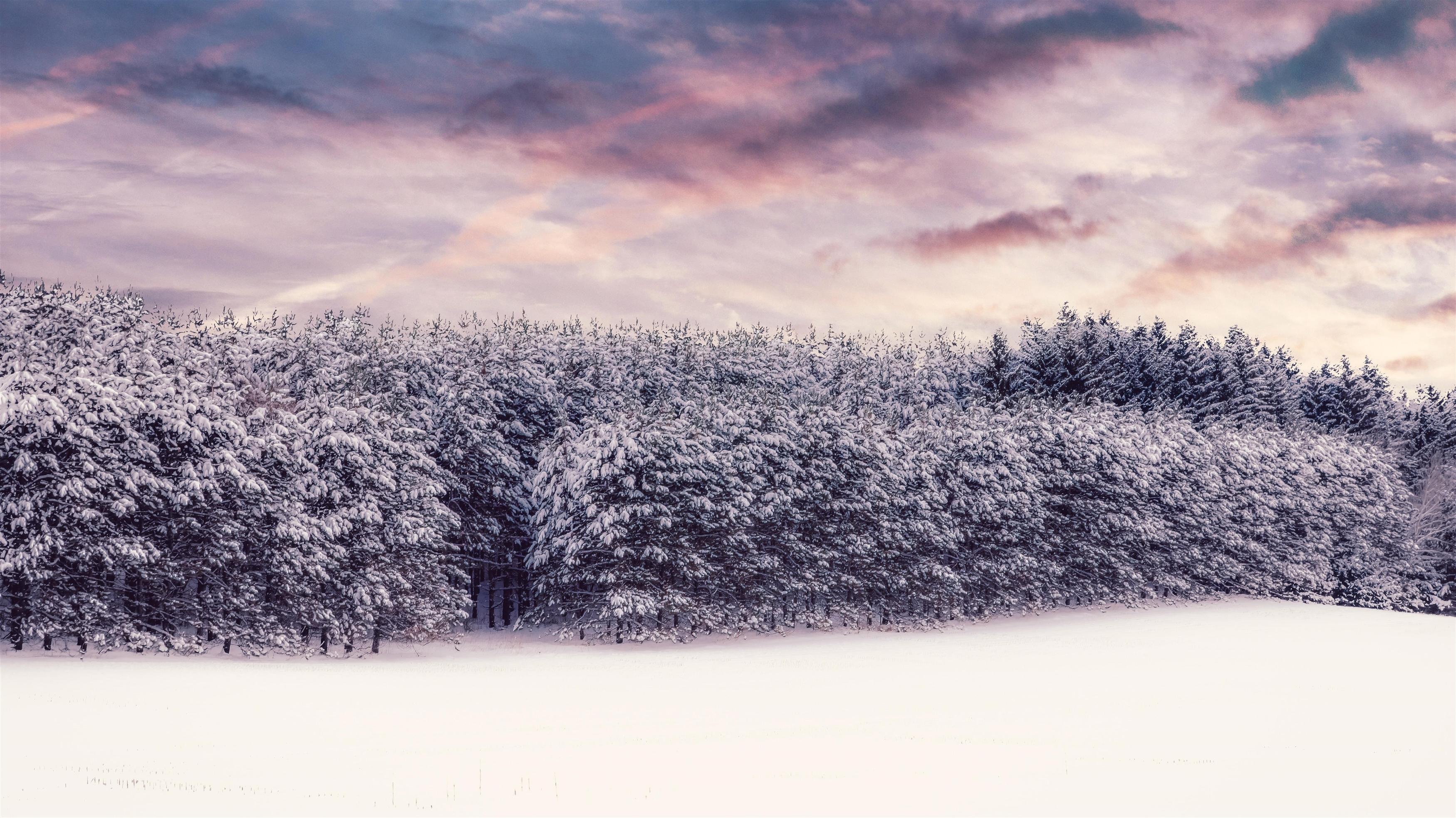 Зимний пейзаж обои скачать
