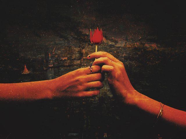 Предложение красный любовь роза