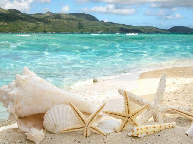 Природа пляж песок океан море берег отдых вода тропическая