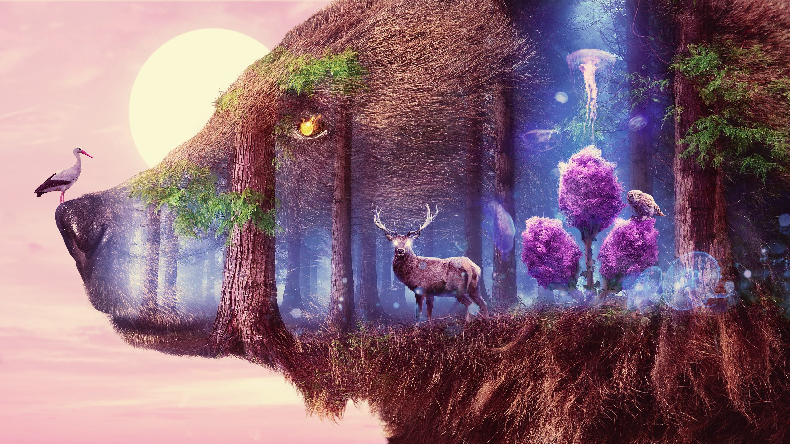 Мистическая дикая природа обои скачать