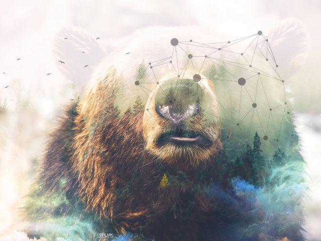 Медведь гризли лес двойной экспозиции