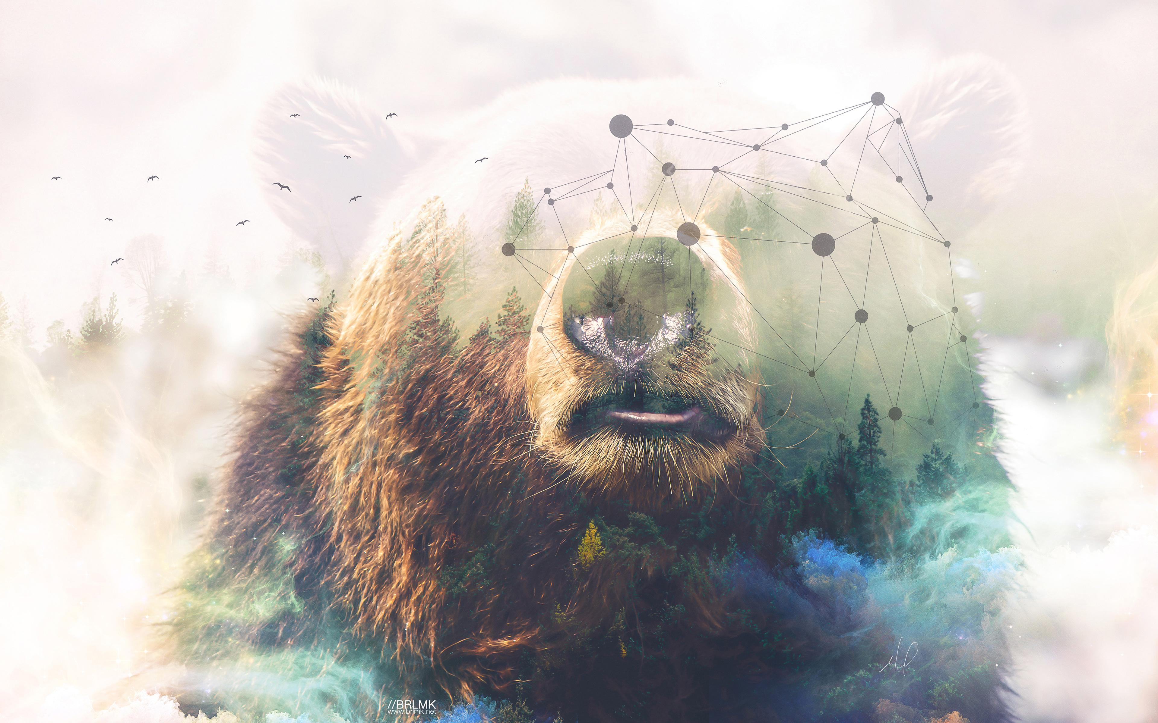 Медведь гризли лес двойной экспозиции обои скачать
