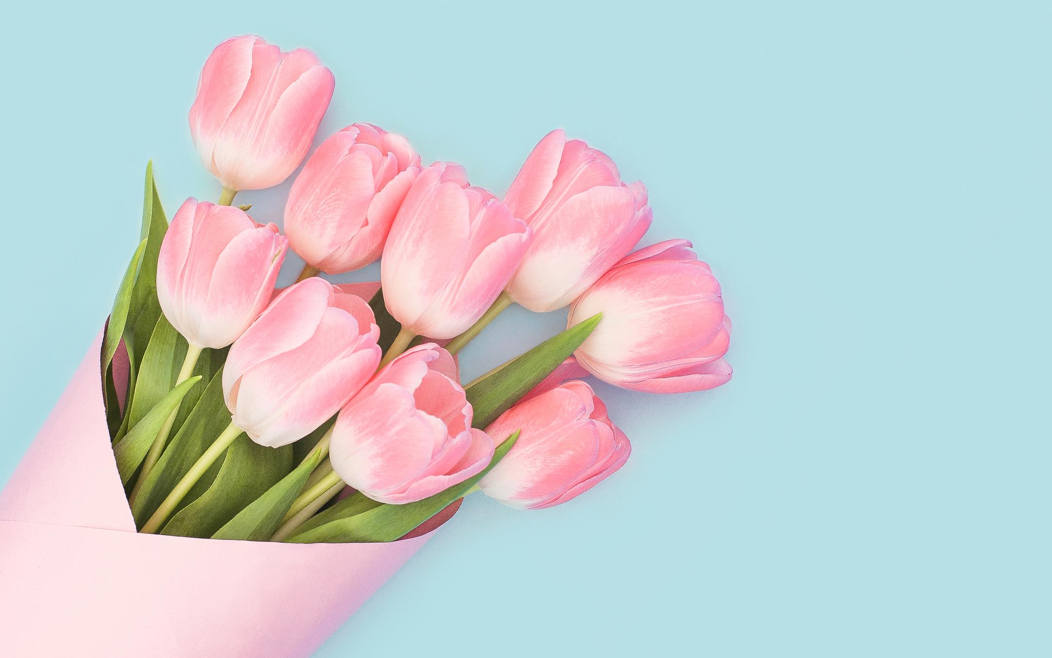 Детские розовые тюльпаны обои скачать