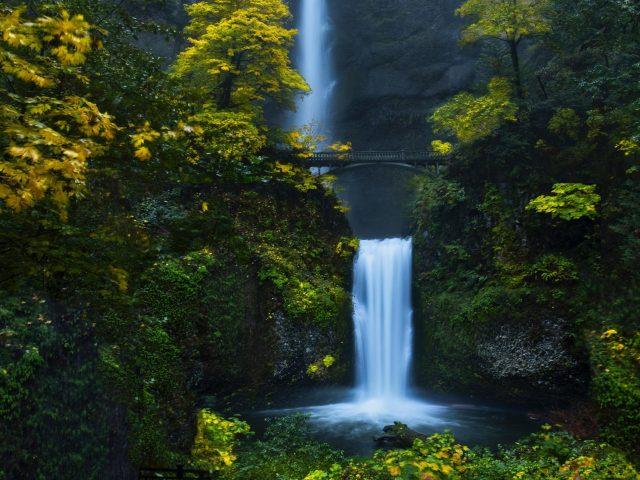 Водопад лес