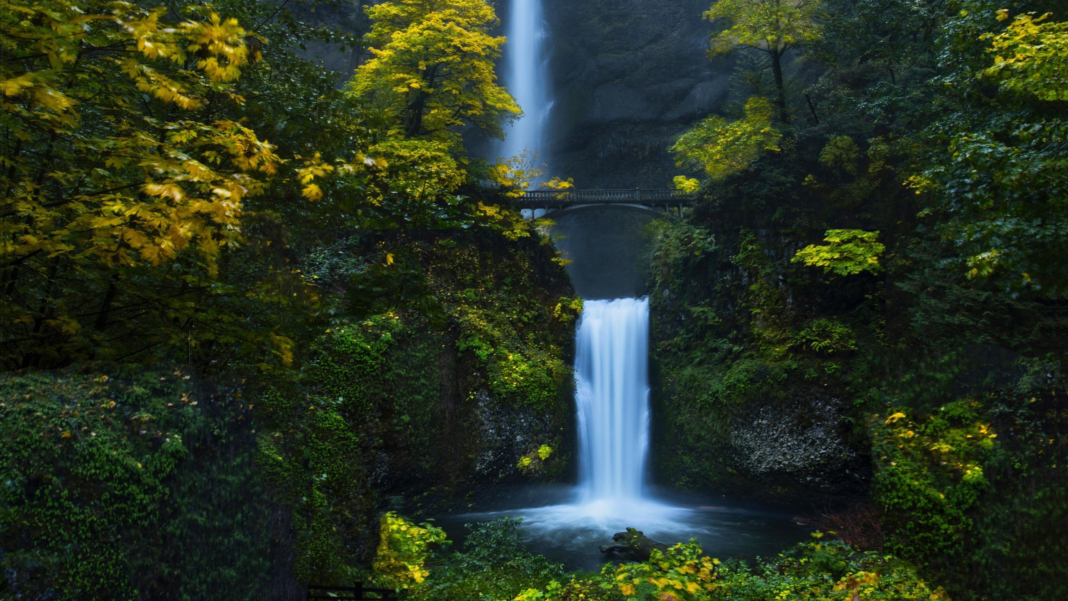 Водопад лес обои скачать