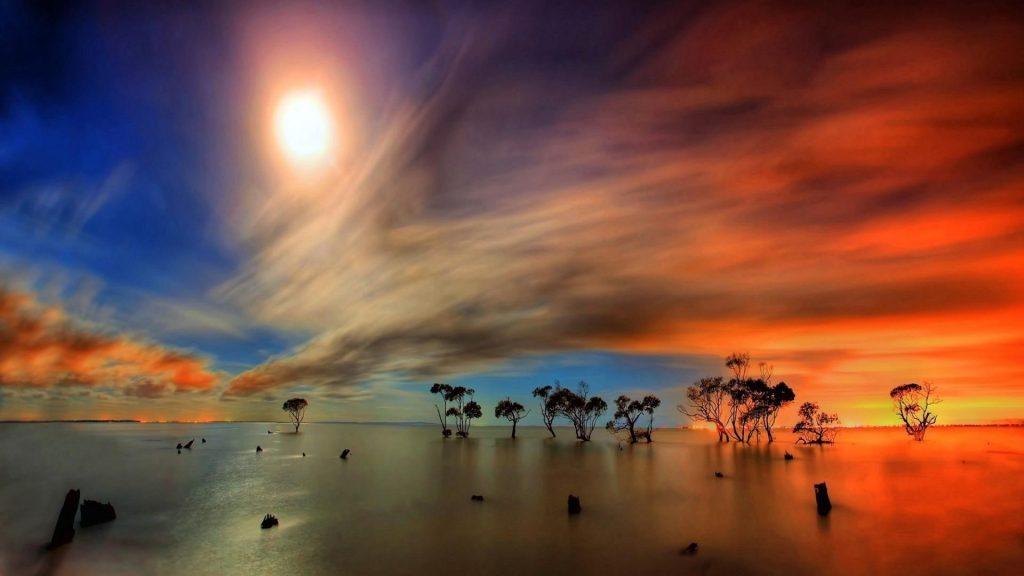 Деревья посреди водоема под сумеречным облачным небом с лунной природой обои скачать