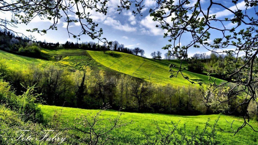 Зеленый склон горы с деревьями под облачным голубым небом природа обои скачать