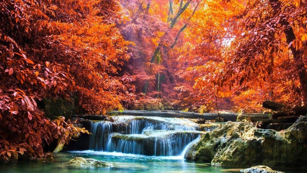 Пейзаж вид красочных осенних лиственных деревьев и водопада между скал льющегося на реку с солнечными лучами природа обои скачать