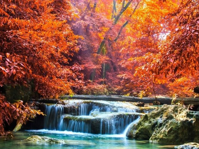 Пейзаж вид красочных осенних лиственных деревьев и водопада между скал льющегося на реку с солнечными лучами природа