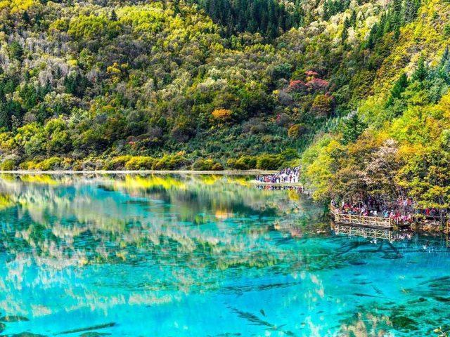 Красивые пейзажи зелень горы отражение на водной природе
