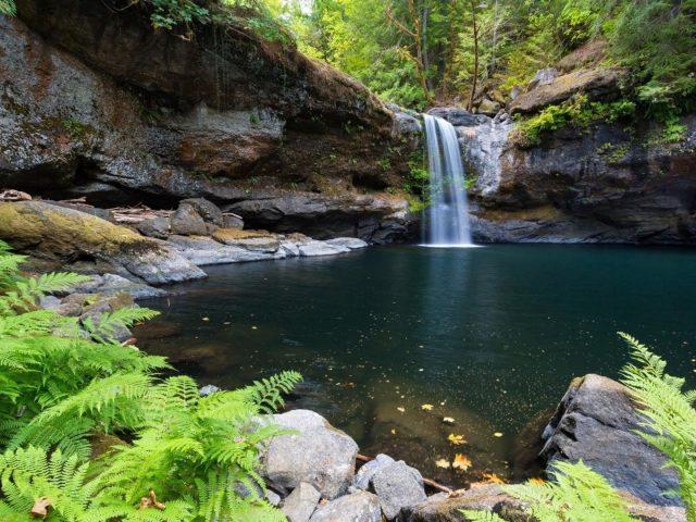 Водопад, льющийся на реку, окруженную зелеными деревьями лесной природы