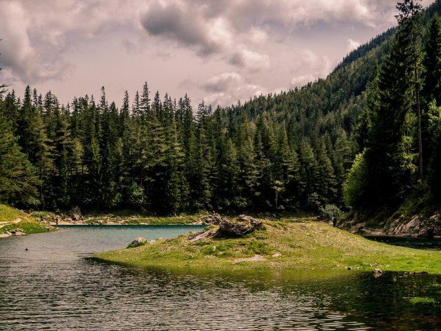 Зеленые деревья покрытые между озером под облаками в дневное время природа