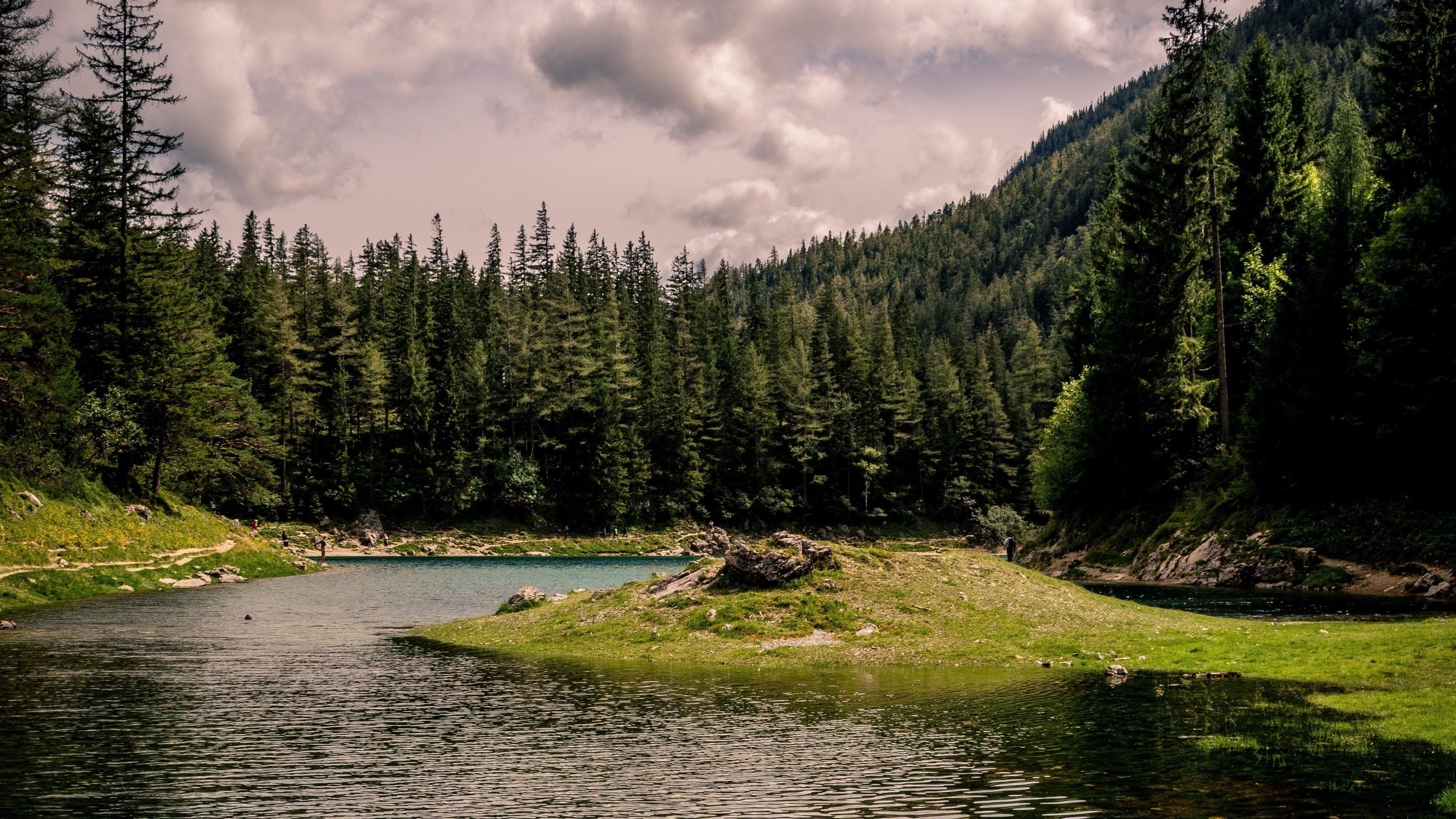 Зеленые деревья покрытые между озером под облаками в дневное время природа обои скачать