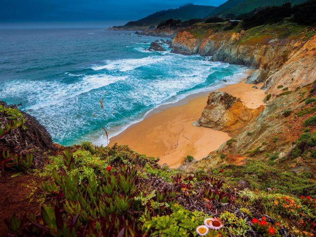 Джулия Пфайффер Бернс государственный парк калифорнийское побережье с цветами природа